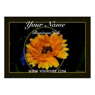 Marigold 1 business card