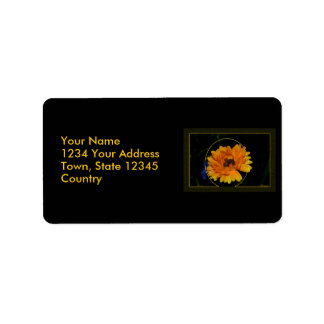 Marigold 1 custom address labels
