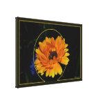 Marigold 1 gallery wrap canvas