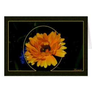 Marigold 1 greeting card