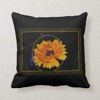 Marigold 1 pillows