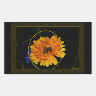 Marigold 1 rectangular sticker