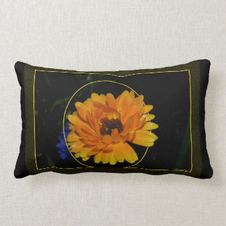 Marigold 1 throw pillows