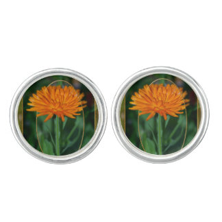 Marigold 2 cufflinks
