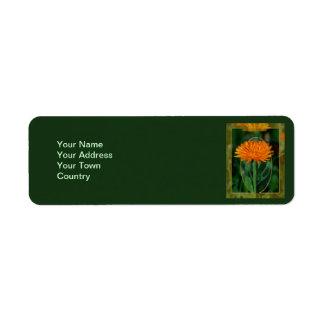 Marigold 2 label