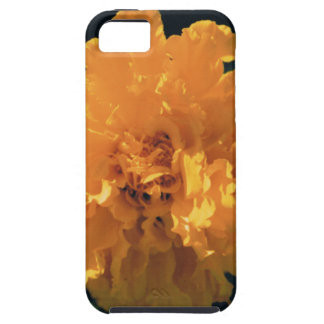 Marigold iPhone 5 Cover