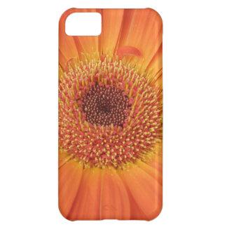 Marigold iPhone 5C Covers