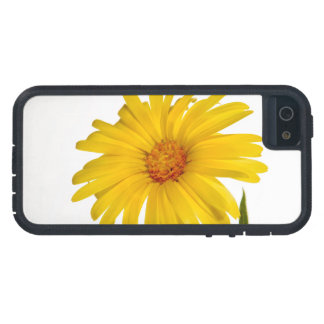 marigold case for iPhone SE/5/5s