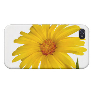 marigold cases for iPhone 4