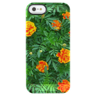 Marigold Clear iPhone SE/5/5s Case