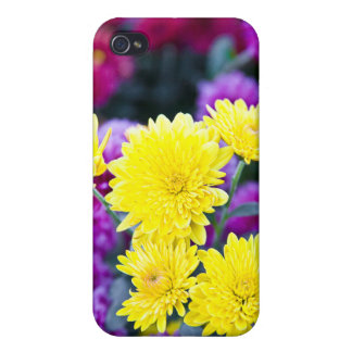 Marigold Colors Vermont Sumer iPhone 4 Covers