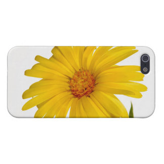 marigold cover for iPhone SE/5/5s