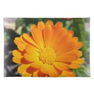 marigold flower cloth placemat