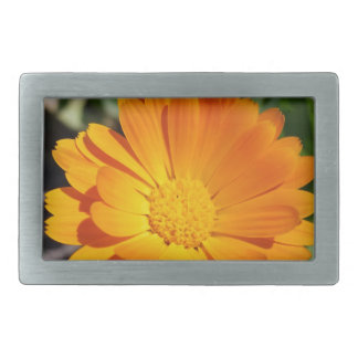 marigold flower rectangular belt buckle