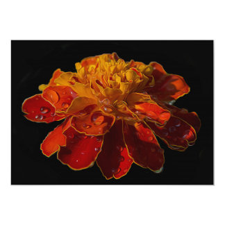 Marigold flower with water drops card