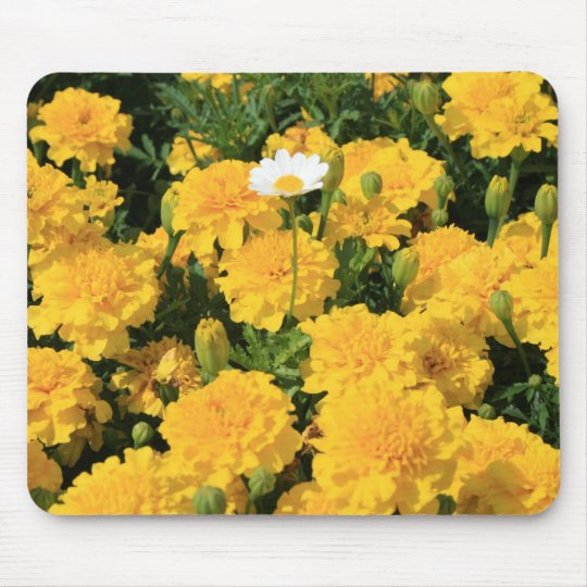 Marigold Flowers and a Daisy Flower Mousepad