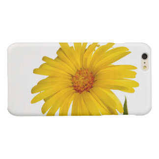 marigold glossy iPhone 6 plus case