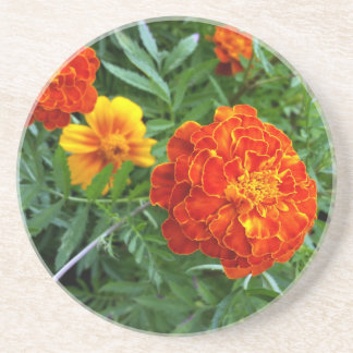 marigold in the sun sandstone coaster