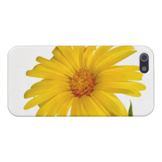 marigold iPhone SE/5/5s cover