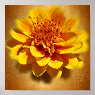 Marigold Joy Print