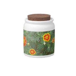 Marigold Melody Candy Jars