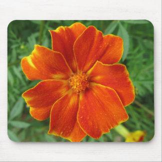 Marigold Mouse Pad
