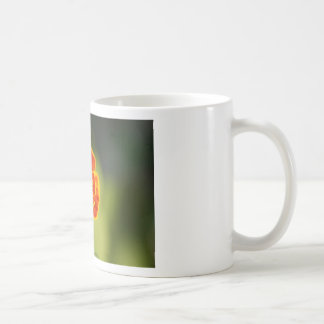 marigold mugs