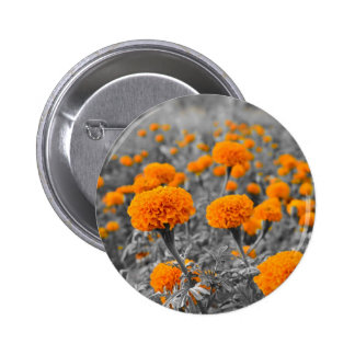 Marigold or Tagetes flowers Pinback Button