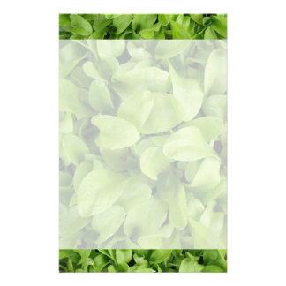Marigold Seedlings Stationery