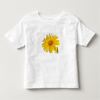 marigold toddler t-shirt