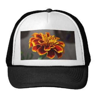 Marigold Trucker Hat