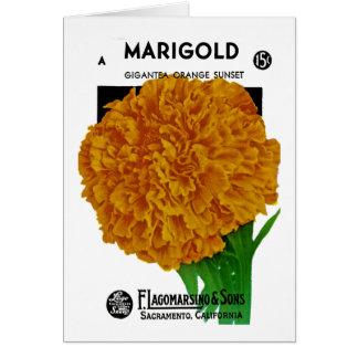 Marigold Vintage Seed Packet Greeting Cards