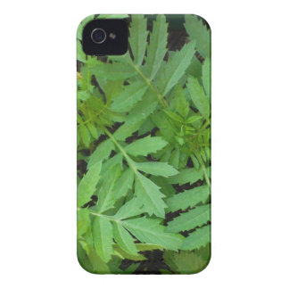 marigoldleaves iPhone 4 cases