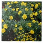 Marigolds and daisies ceramic tile
