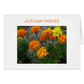 Marigolds, Autumn Wishes Card