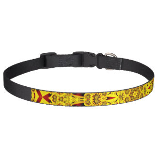 Marigolds Colorful Dog Collars