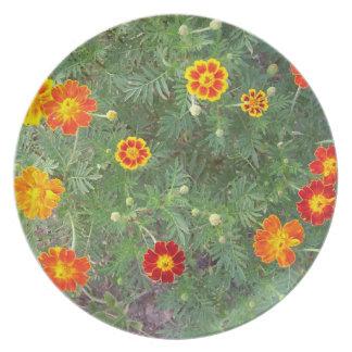 Marigolds Dinner Plate