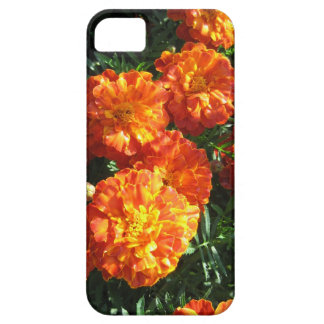 Marigolds iPhone 5 Case