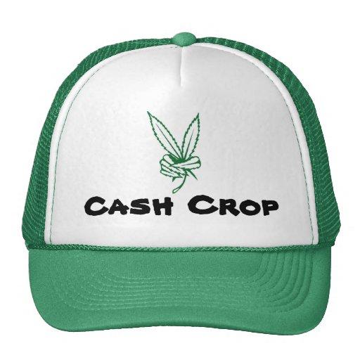 Marijuana-Paz, cultivo comercial Gorras