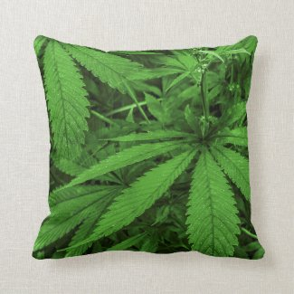 Marijuana Plants Photo Throw Pillow