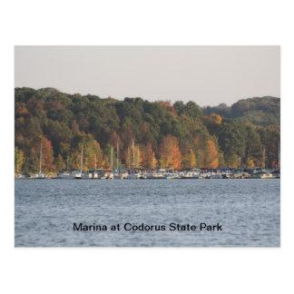 Marina at Codorus State Park Postcard