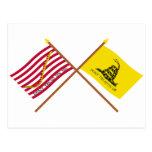 Marina de guerra cruzada Jack y bandera de Gadsden Tarjetas Postales