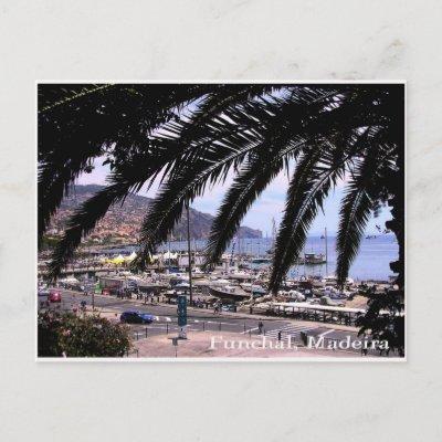 Marina view @ Funchal Postcard postcard