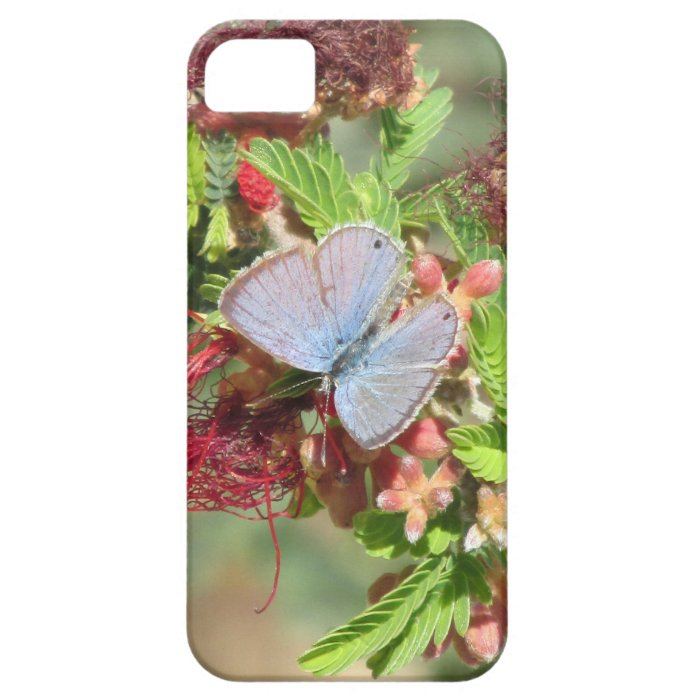 Marine Blue Butterfly iPhone 5 Case