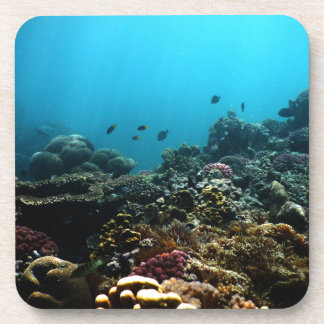 Marine Environment in the Pacific Drink Coaster