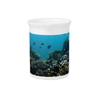 Marine Environment in the Pacific Drink Pitchers