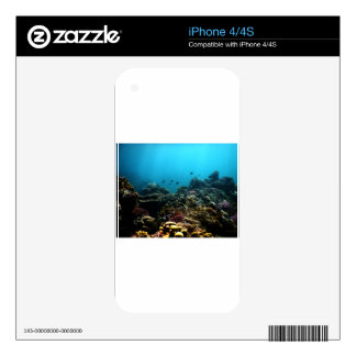 Marine Environment in the Pacific iPhone 4 Skins