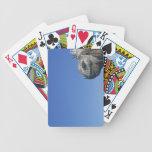 Marine Iguana Bicycle Playing Cards