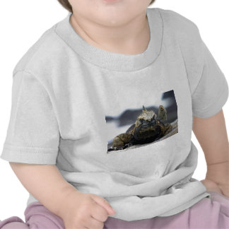 Marine iguana tshirts