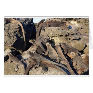 Marine iguanas on volcanic rock, Galapagos Islands Card